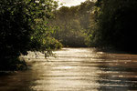 """Wir machten eine Bootstour auf dem Fluß und bekamen viel zu sehen. Am Abend waren wir in der """"Cano Negro Naturel Lodge"""" untergebracht."""