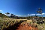 """Unser nächstes Ziel war der National Park"""" Rincon de la Vieja"""", in desen Zentrum der immer wiederaktive Vulkan ist."""