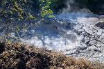 """Am nächsten Tag sollte es auf den Kraterrand des """" Rincon de la Vieja """" gehen, aber aufgrund eines Ausbruches einem Jahr zuvor, war dies nicht möglich, da es noch kein Weg gab."""