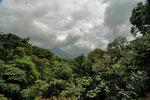 """Am nächsten Tag fuhren wir zum Vulkan """" Arenal"""". zunächst machteen wir eine Wanderung über das Hängebrückensystem der """" Arenal Hanging Bridges""""."""