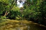 An der Pazifikküste befuhren wir den Rio Teru und bekamen eine garndiose Landschaft und Tierwelt zu sehen.