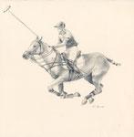"""""""Polo_1"""". 2017. Bleistiftzeichnung auf Papier."""