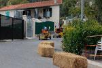 Seifenkistenrennen in Coaraze (9)