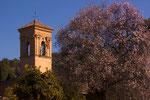 Kirche mit Mandelbaum
