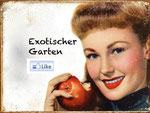 Exotischer Garten