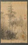 Kiefer im Nebel, Tösstal, 71x46 cm, chin. Tusche