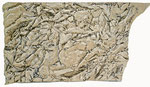 geological structures, 170x97 cm, Mischtechnik auf Papier