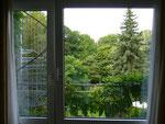 Blick aus meinem Hotelfenster