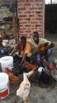 Hasani und Mathias bei den Hühnern