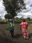 Hasani und Neema sammeln die Lieblingsgräser für Hühner und Hasen