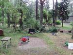 Waldfriedhof auf estnisch