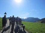 Im Münstertal der Sonne entgegen