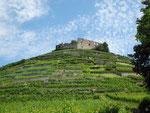Staufen im Breisgau Burgruine