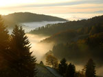 Inversionswetter im Schwarzwald
