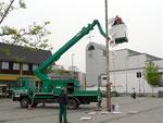 Das Gartenamt der Stadt stellt den Baum auf