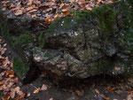 zerstörte Bunkerwand