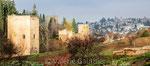 Jardins et palais de l'Alhambra à Grenade (Espagne)