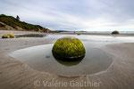 Boulders Rocks à Moeraki (Nouvelle Zélande)