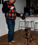 Hennie vom Haus Ehrlich 26 december 2010, 11 weken oud - Beloning na aankijken van het baasje