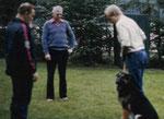 Faroek van de Broekse Hoeve (training Epe-Gronau)