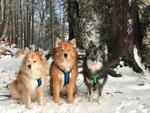 Tuvra, Mikko, Rilla