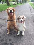 Lara & Cody