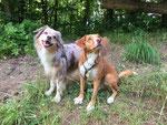 Milo & Cody