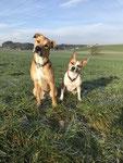 Bubba & Leyla