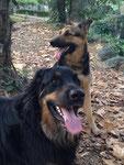 Irka & Cooper