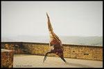 Yeux sur l'horizon, sculpture à Domme/ Sarlat 320 cm °2014