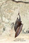 Bat, Vleermuis, Chauvesouris