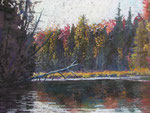 "Autumn On the Indian - Pastel Painting, 14""x18, 2011: $450."