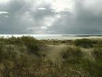 Большая дюна. Нида