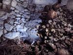 Hague dans un ossuaire