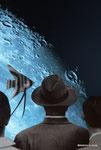 月の魚/Moon Fish