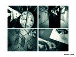 眠れぬ夜のエンゼルフィッシュ/Angelfish's Sleepless Nights