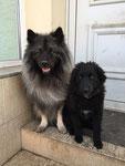 Bummi und Teddy