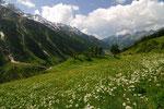 Höhenweg im Lötschental