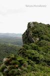 アフリ嶽から見たシヌクシ嶽。頂上の拝所が見えます。