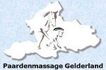 Paardenmassage Gelderland