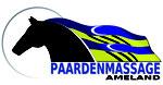 paardenmassage Nathalie Nomden Ameland