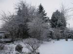 Garten im Winter 2010 (Foto: Wolfgang Voigt)