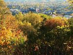 Herbstfeuer auf dem Aachener Lousberg (Foto: Wolfgang Voigt)