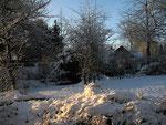 Erster Schnee im Garten (Foto: Wolfgang Voigt)