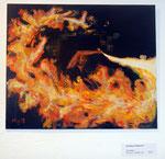 """""""Feuertanz"""" von Christine Gallauner"""