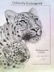 """""""Critically Endangered"""", Bleistift auf Papier, 20 x 30 cm, Jahr: 2018"""