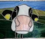 Kuh mit Ohrmarken