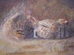 Rebhühner im Sandbad, Mischtechnik, 15 x 25, 2005