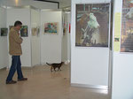 """Die """"Elefantenhauskatze"""" besichtigt die Ausstellung ..."""