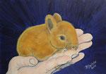 """""""Tiere in Menschenhand, Kaninchen"""" Beatrix Leitold"""